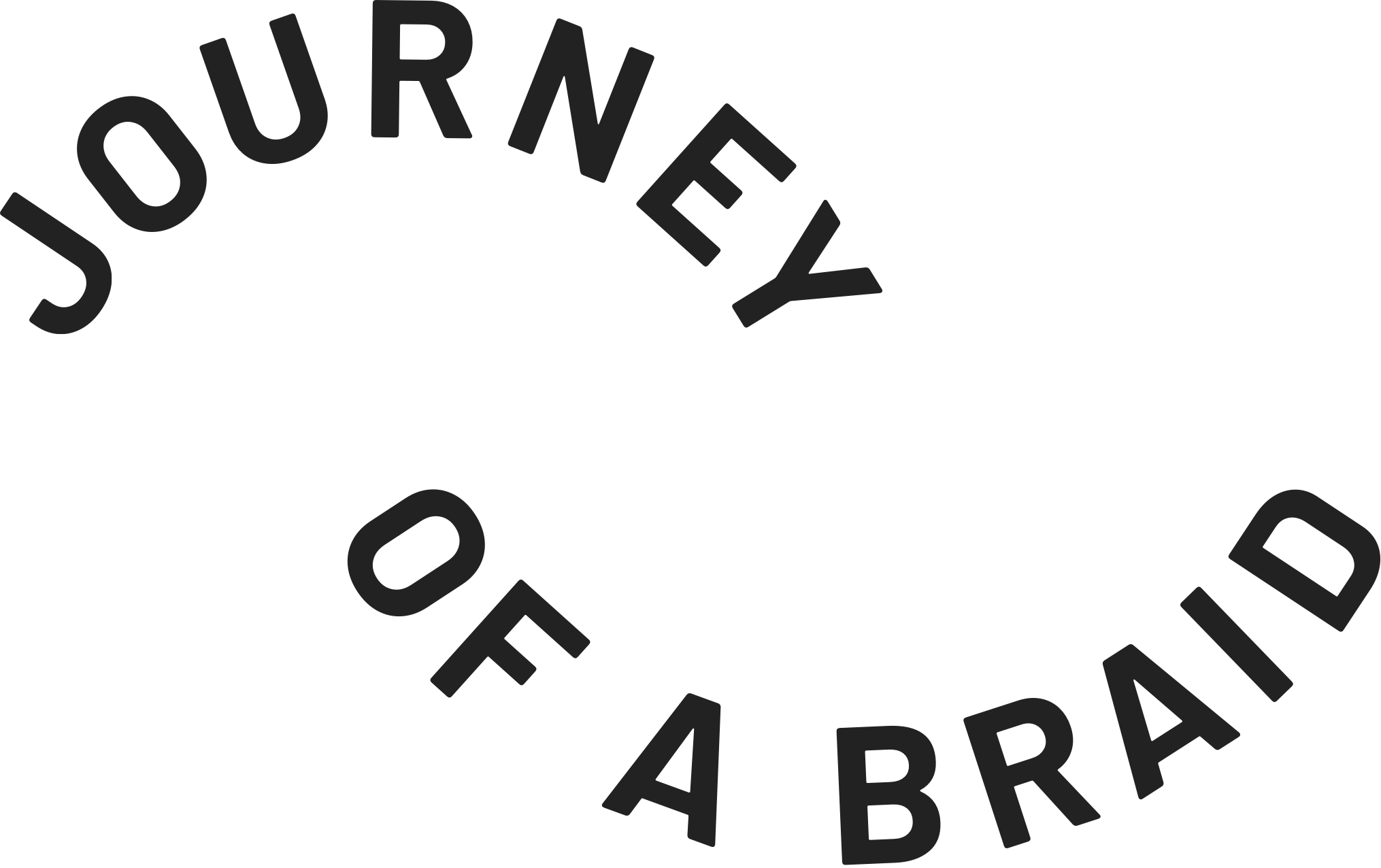 Journey of a Braid Logotype